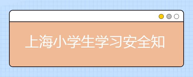 上海小学生学习安全知识 遵守交通法规