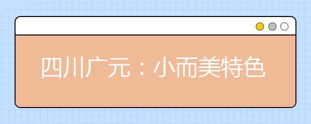 四川广元:小而美特色学校建设