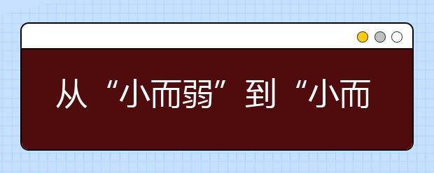 """从""""小而弱""""到""""小而优""""""""小而特"""" 河北教育如何突破?"""