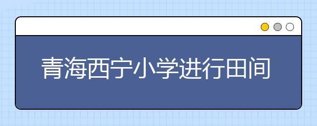青海西宁小学进行田间劳动 告别小学生活