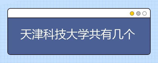 天津科技大学共有几个校区?各个校区具体地理位置在哪里?