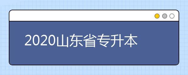 2020山东省专升本招生补录工作解读