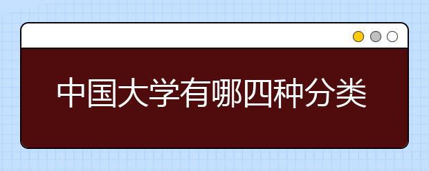 中国大学有哪四种分类体系?