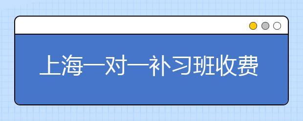 上海一对一补习班收费多少钱?