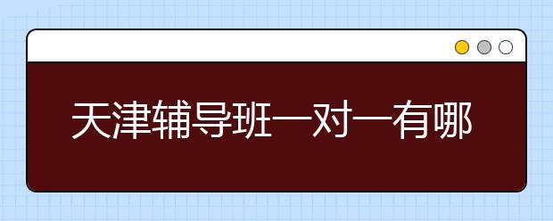 天津辅导班一对一有哪些