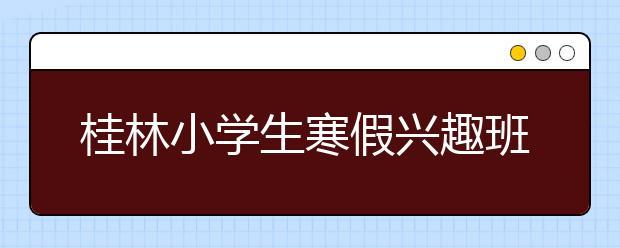 桂林小学生寒假兴趣班选什么好