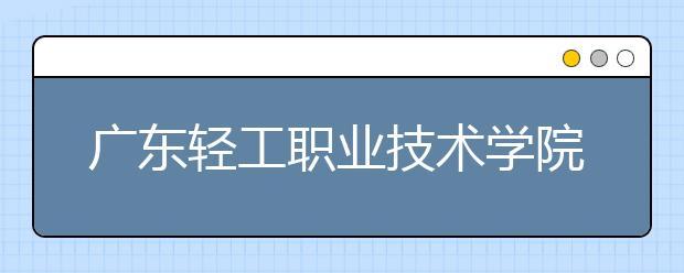 广东轻工职业技术学院2021年招生计划