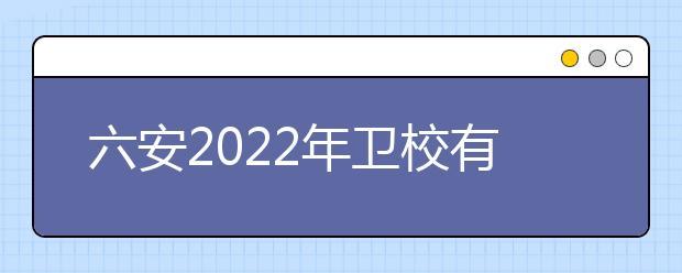 六安2022年卫校有哪些专业适合女生