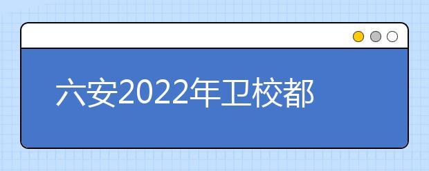 六安2022年卫校都有什么专业适合女生