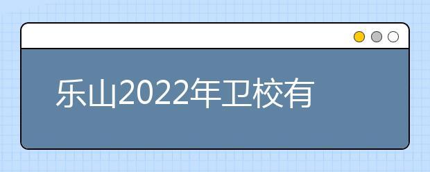 乐山2022年卫校有哪些专业最好