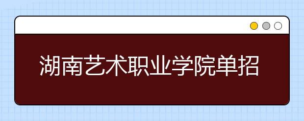 湖南艺术职业学院单招简章